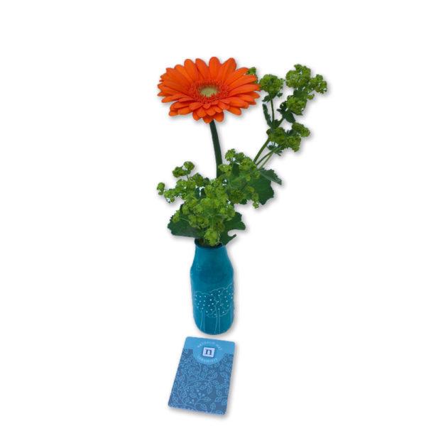 Soliflore et ses fleurs