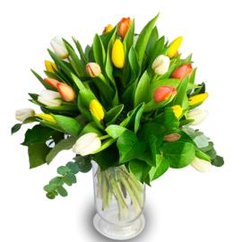 Bouquet de tulipes à Strasbourg